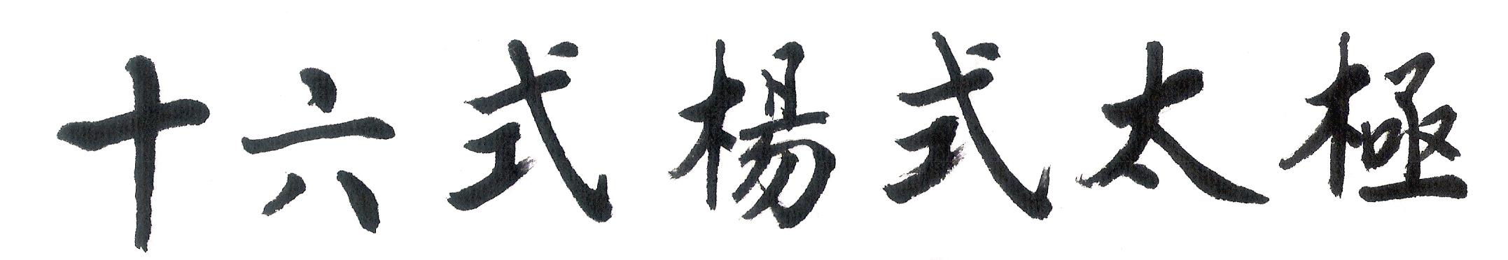 Yang Style Taiji 16 Forms